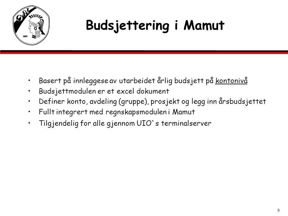 Budsjettering i Mamut Basert på innleggese av utarbeidet årlig budsjett på kontonivå. Budsjettmodulen er et excel dokument.