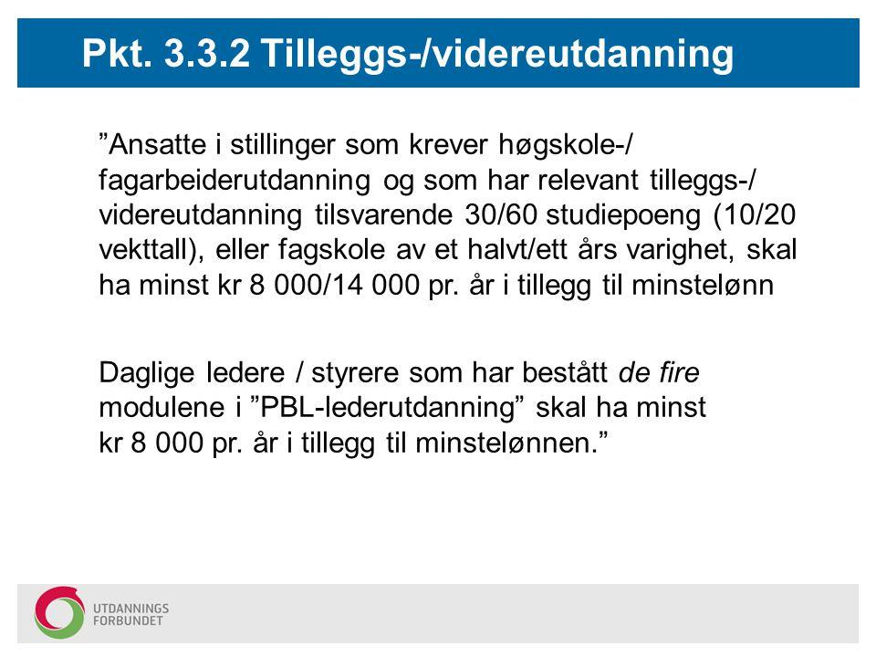 Pkt. 3.3.2 Tilleggs-/videreutdanning