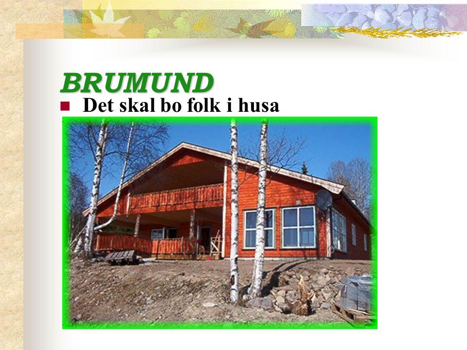 BRUMUND Det skal bo folk i husa