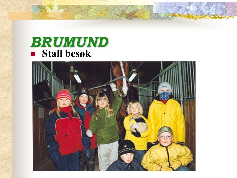 BRUMUND Stall besøk