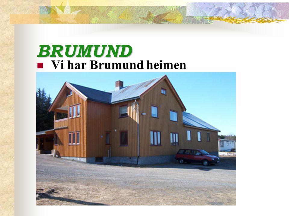 BRUMUND Vi har Brumund heimen