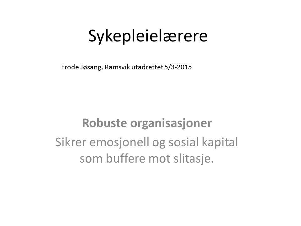 Robuste organisasjoner