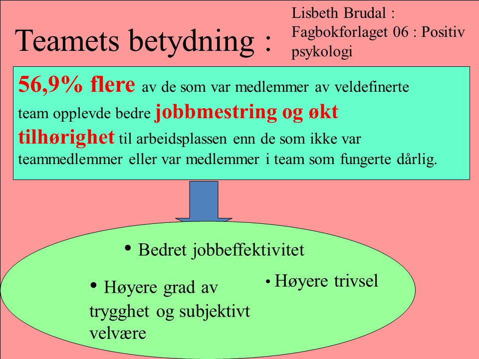 Lisbeth Brudal : Fagbokforlaget 06 : Positiv psykologi