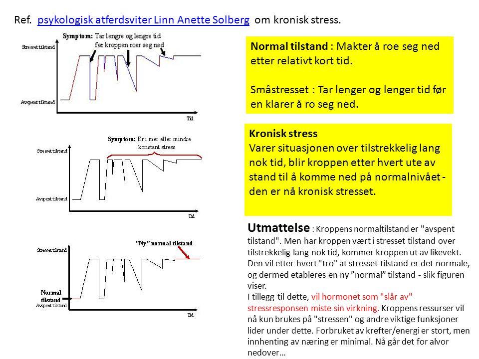 Ref. psykologisk atferdsviter Linn Anette Solberg om kronisk stress.