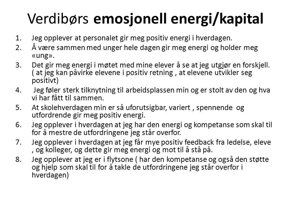 Verdibørs emosjonell energi/kapital