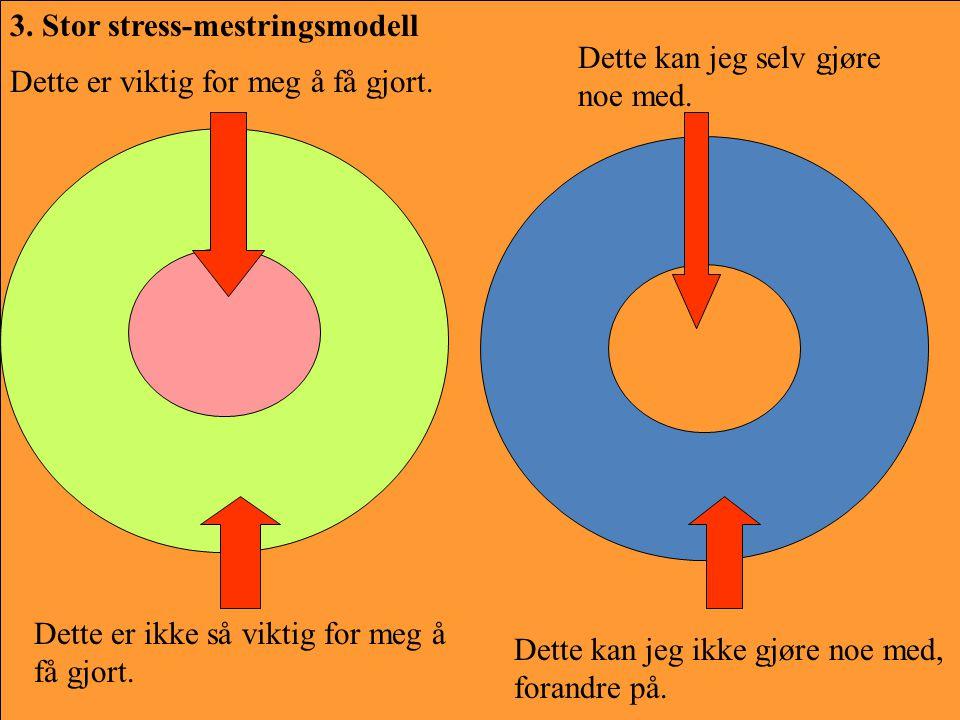 3. Stor stress-mestringsmodell