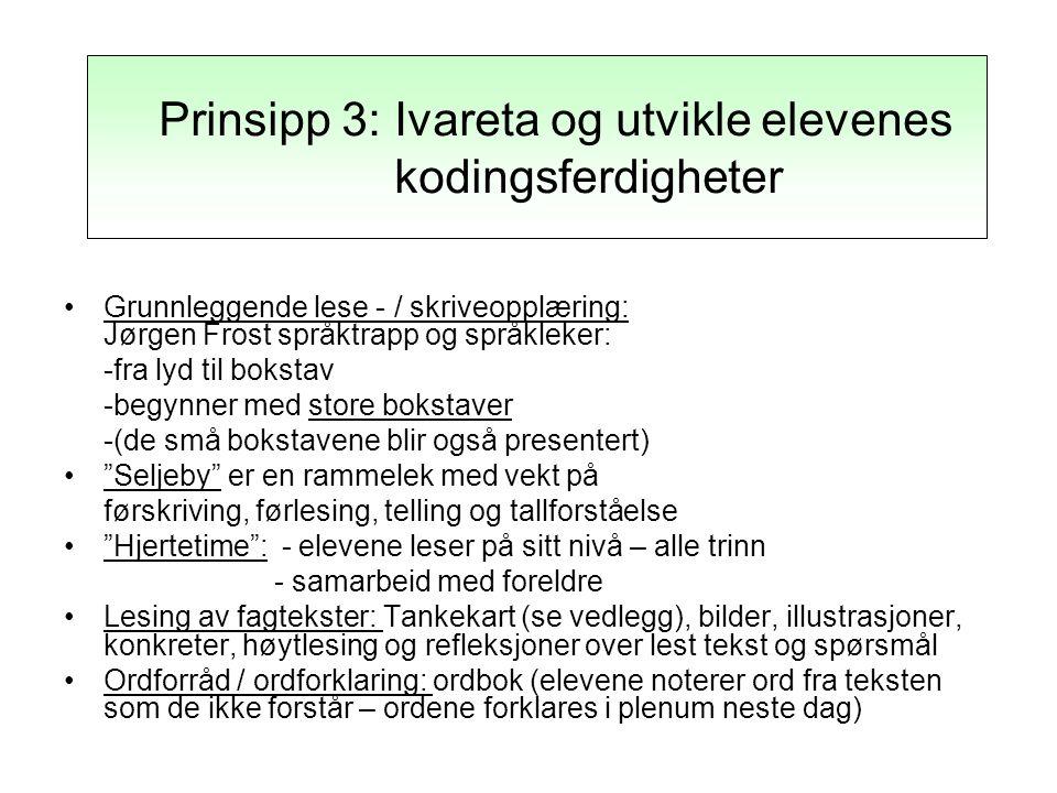 Prinsipp 3: Ivareta og utvikle elevens kodingsferdigheter