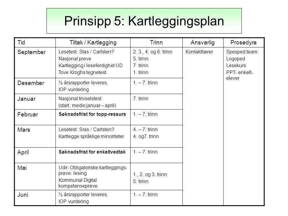 Prinsipp 5: Kartleggingsplan
