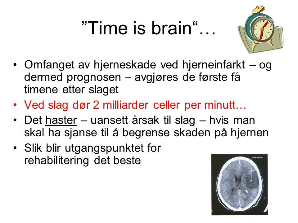 Time is brain … Omfanget av hjerneskade ved hjerneinfarkt – og dermed prognosen – avgjøres de første få timene etter slaget.