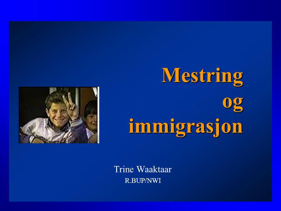 Mestring og immigrasjon