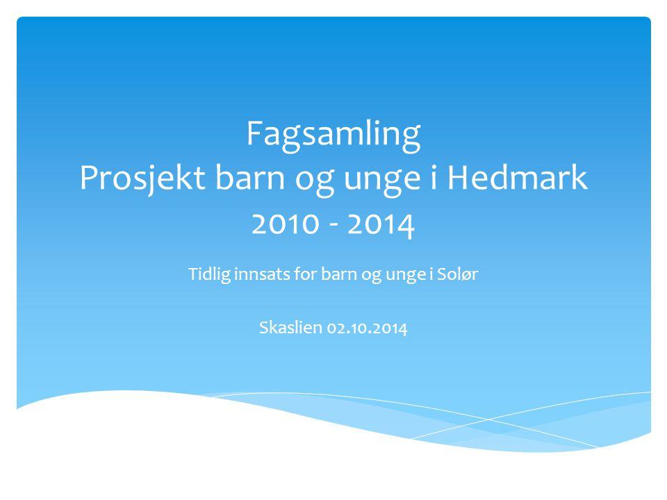 Fagsamling Prosjekt barn og unge i Hedmark 2010 - 2014