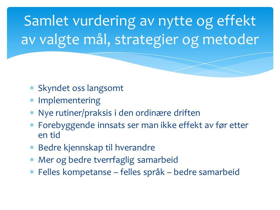 Samlet vurdering av nytte og effekt av valgte mål, strategier og metoder
