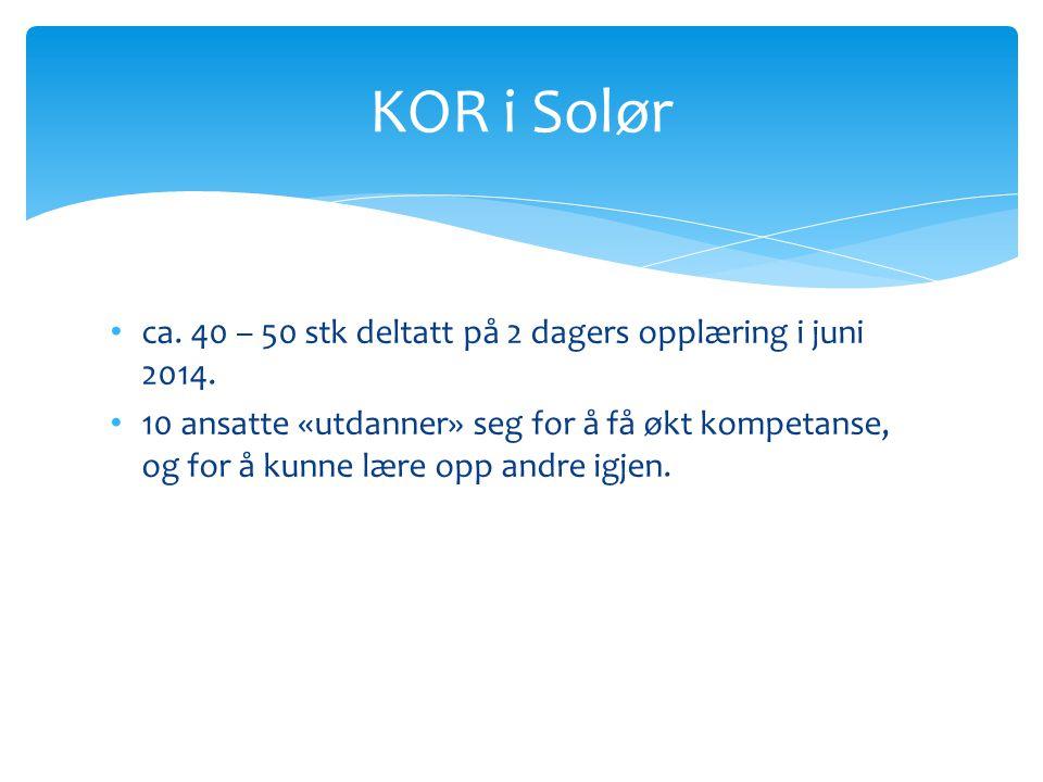 KOR i Solør ca. 40 – 50 stk deltatt på 2 dagers opplæring i juni 2014.