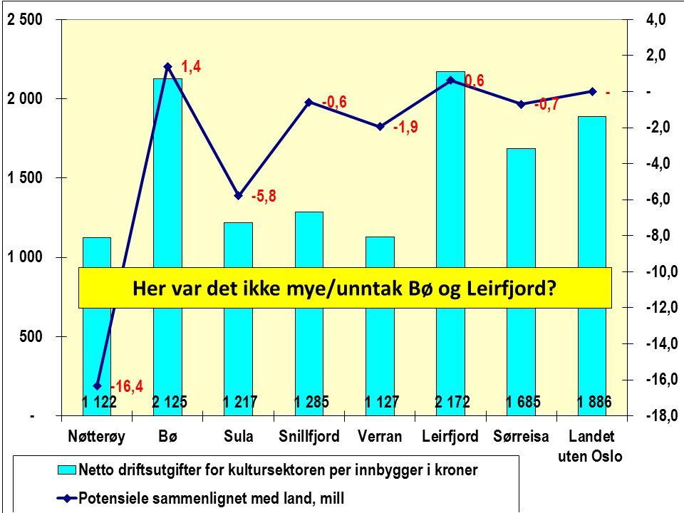 Her var det ikke mye/unntak Bø og Leirfjord