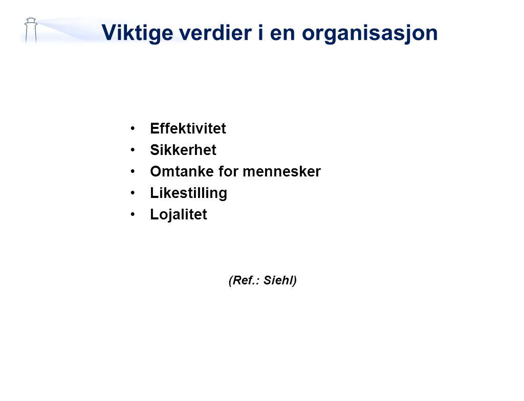 Viktige verdier i en organisasjon