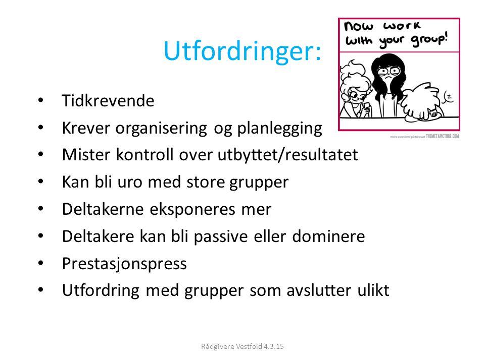 Utfordringer: Tidkrevende Krever organisering og planlegging