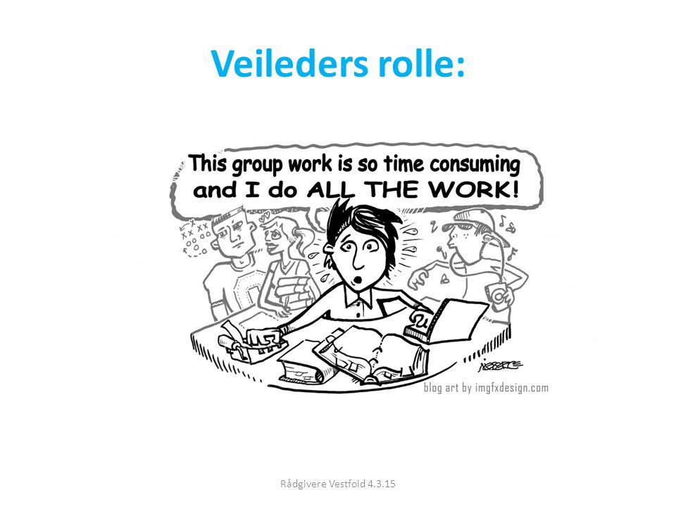 Veileders rolle: Rådgivere Vestfold 4.3.15