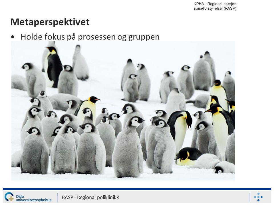 Metaperspektivet Holde fokus på prosessen og gruppen