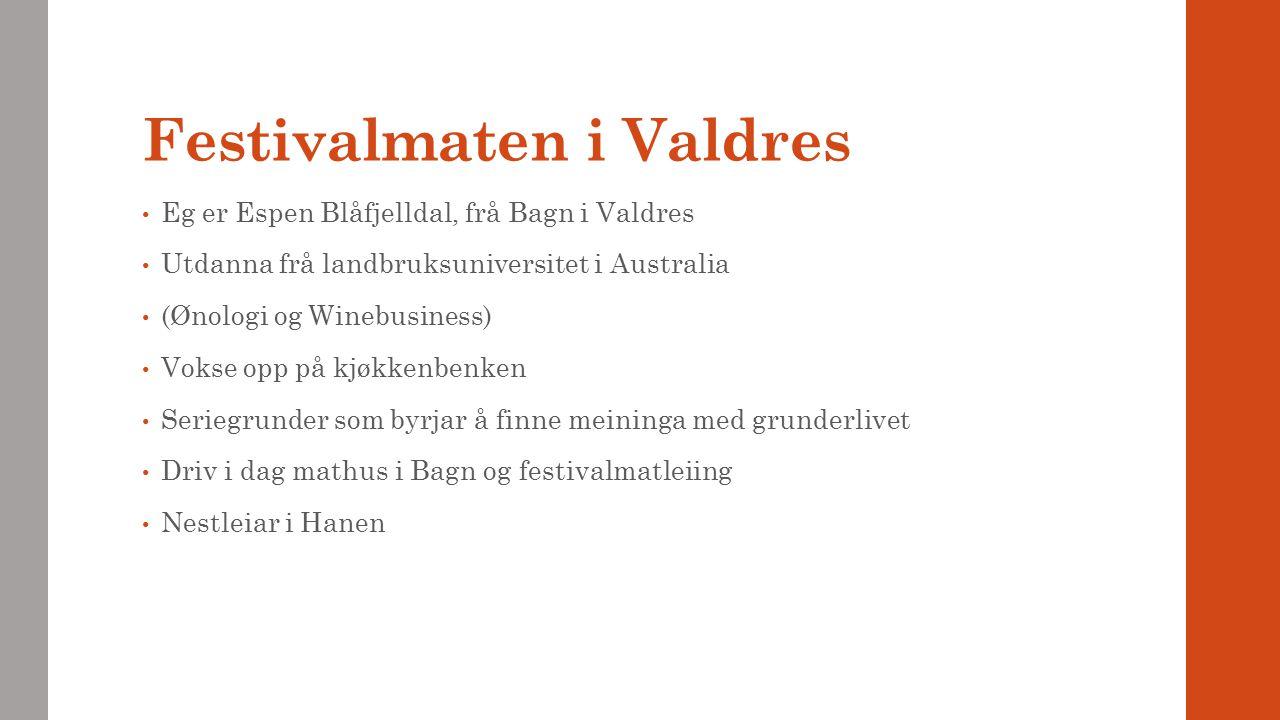 Festivalmaten i Valdres