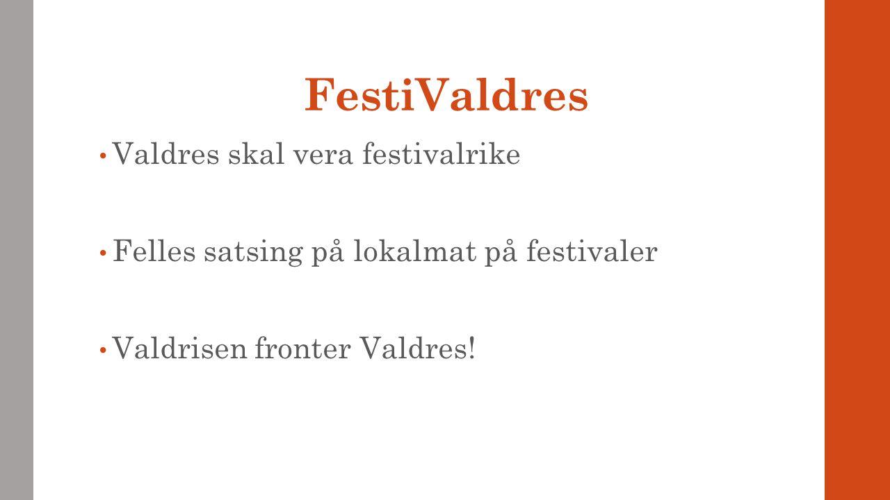 FestiValdres Valdres skal vera festivalrike