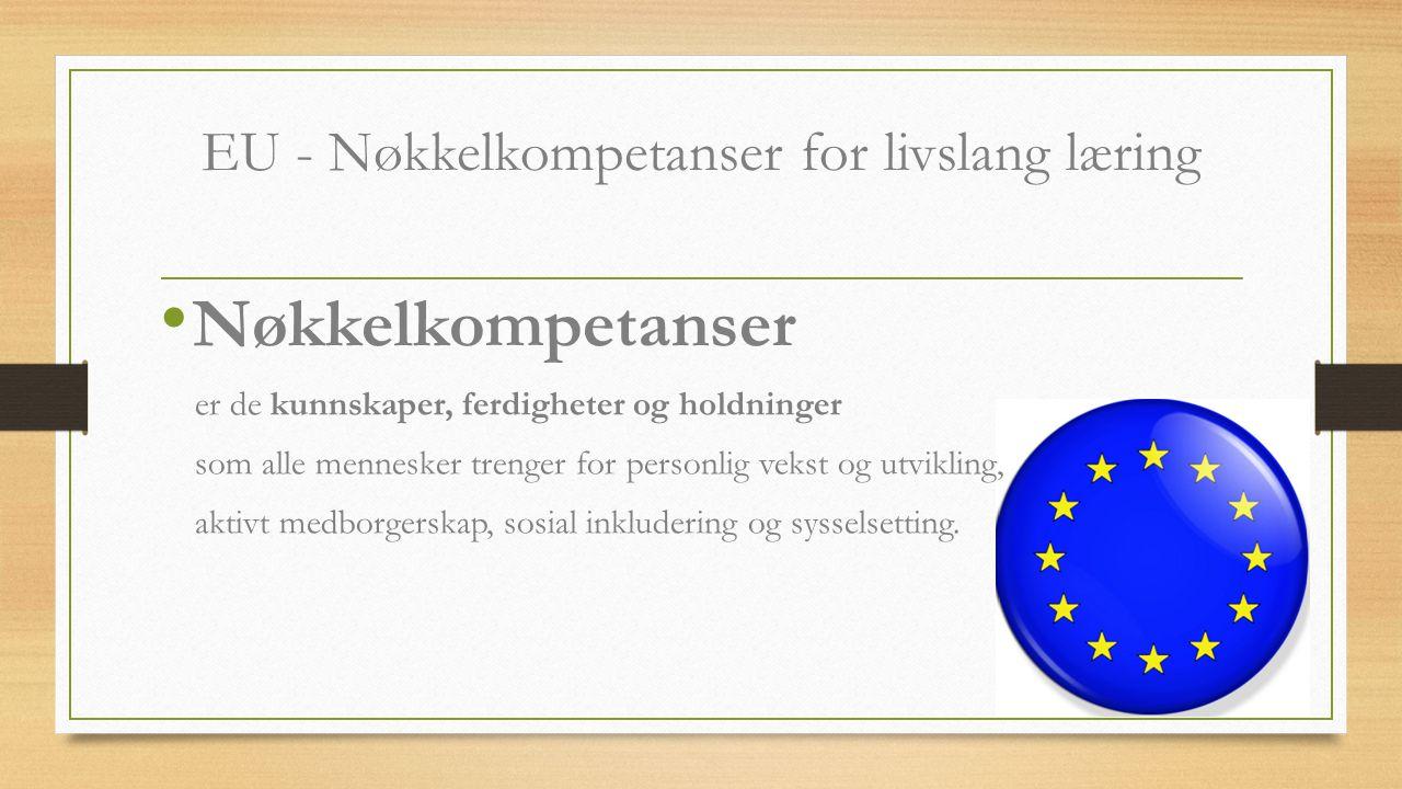 EU - Nøkkelkompetanser for livslang læring