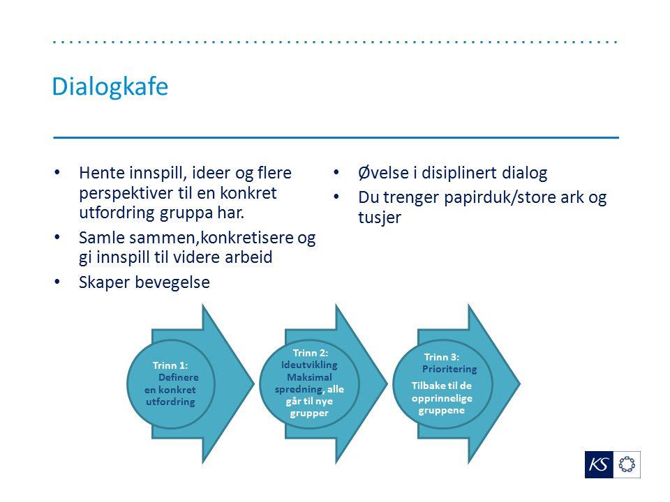 Dialogkafe Hente innspill, ideer og flere perspektiver til en konkret utfordring gruppa har. Øvelse i disiplinert dialog.