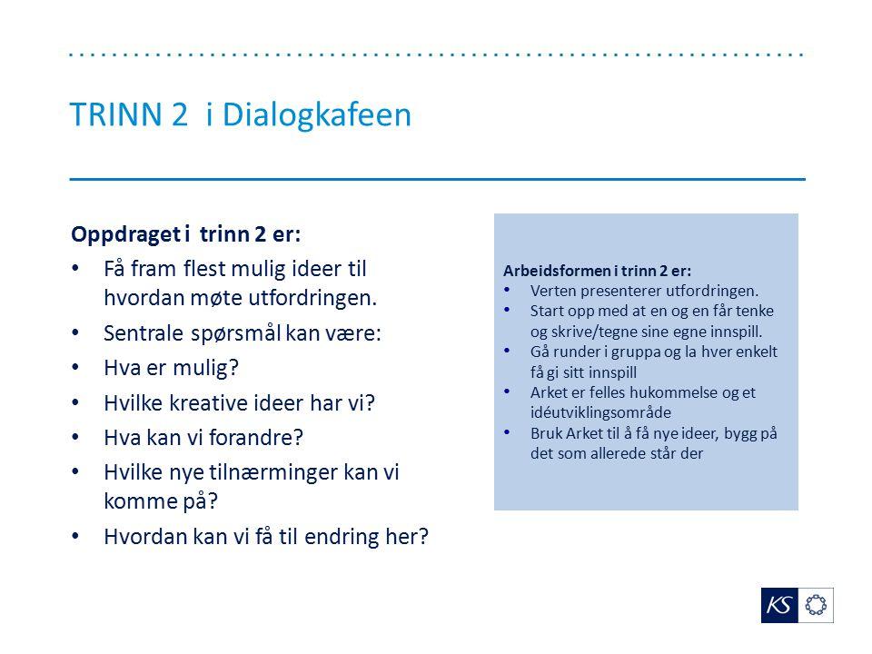 TRINN 2 i Dialogkafeen Oppdraget i trinn 2 er: