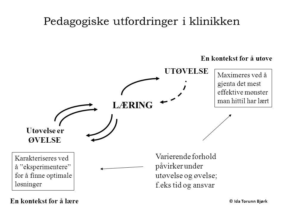 Pedagogiske utfordringer i klinikken
