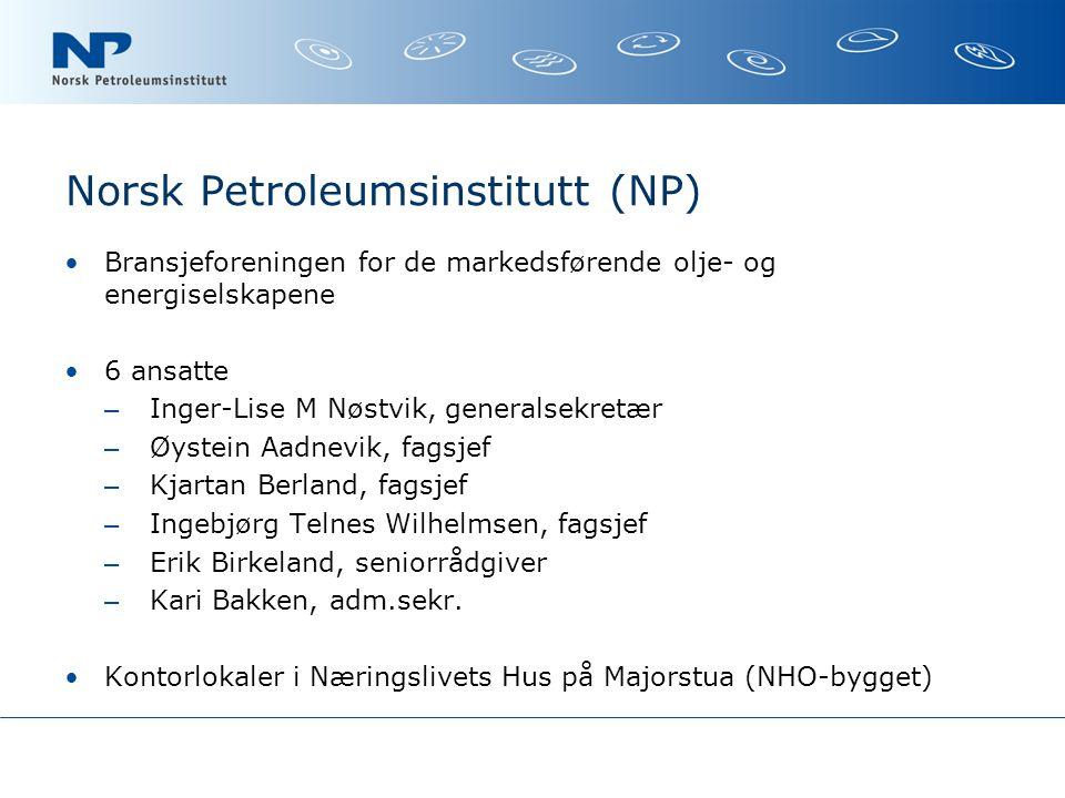Norsk Petroleumsinstitutt (NP)