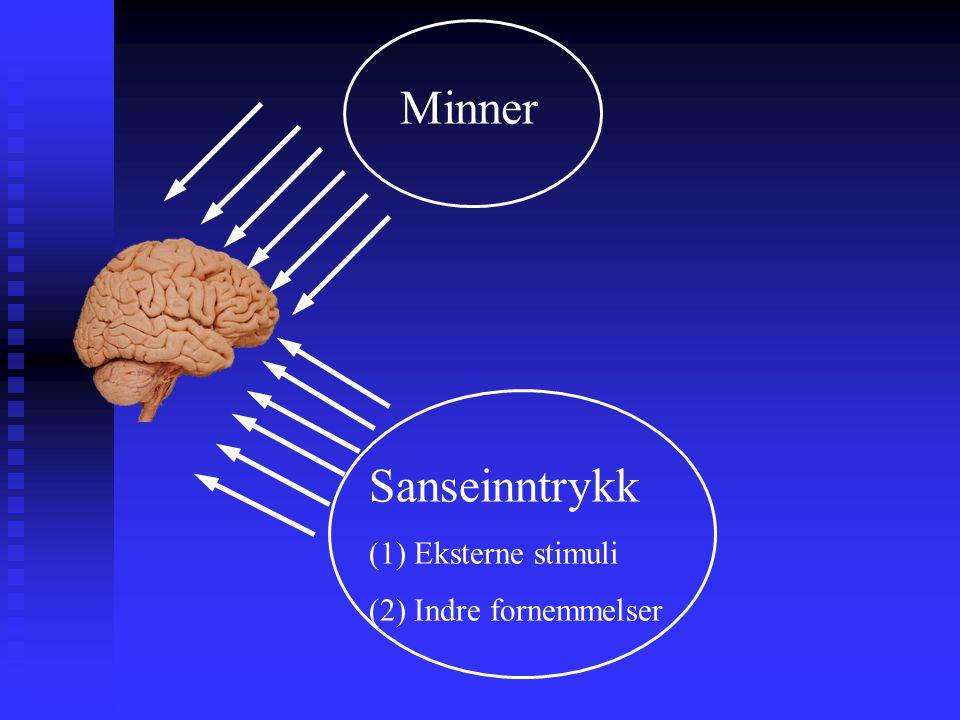 Minner Sanseinntrykk (1) Eksterne stimuli (2) Indre fornemmelser