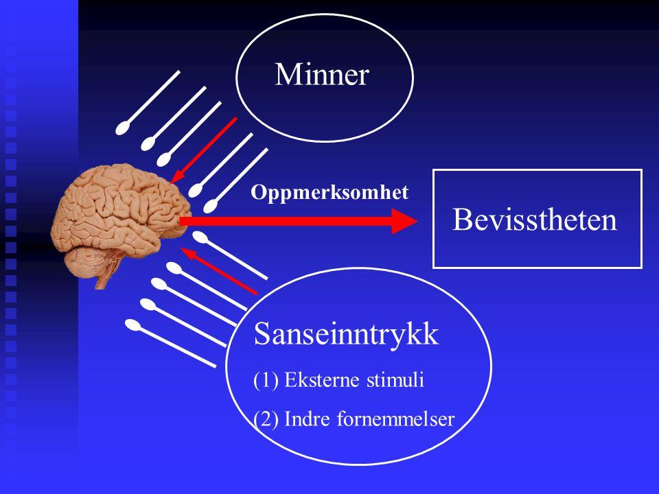Minner Bevisstheten Sanseinntrykk Oppmerksomhet (1) Eksterne stimuli