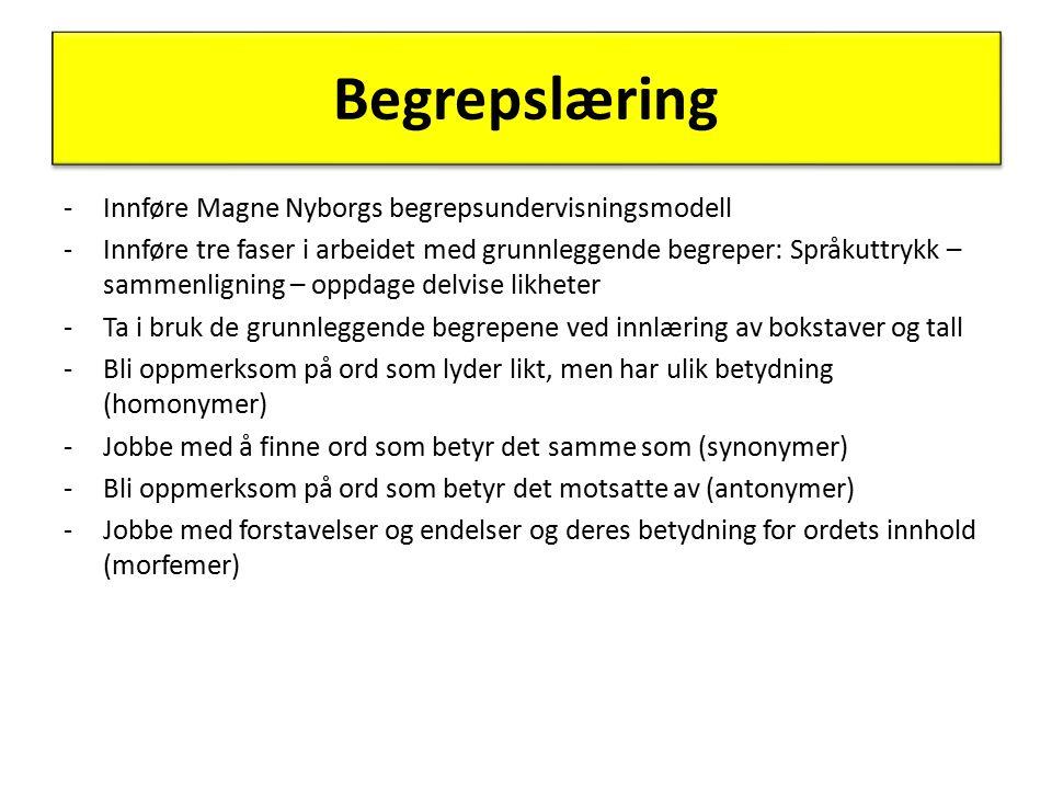 Begrepslæring Innføre Magne Nyborgs begrepsundervisningsmodell