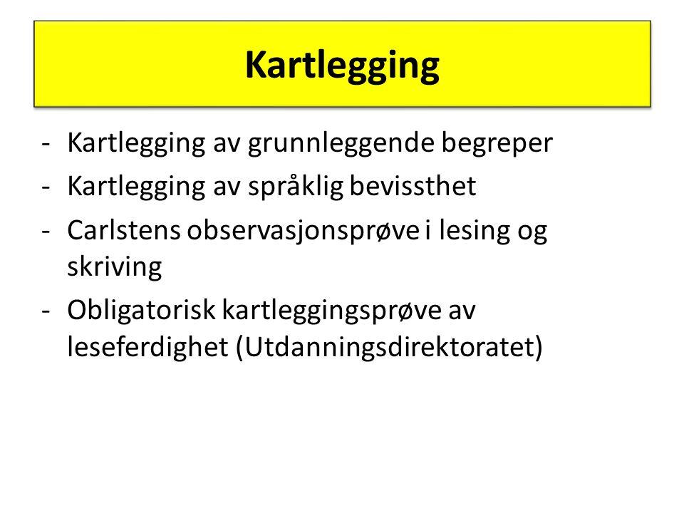 Kartlegging Kartlegging av grunnleggende begreper
