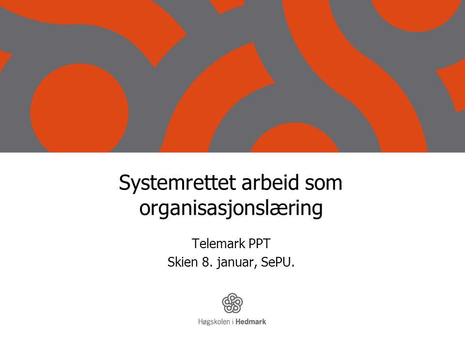 Systemrettet arbeid som organisasjonslæring