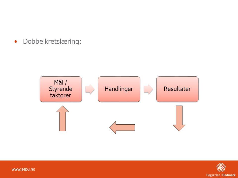 Mål / Styrende faktorer