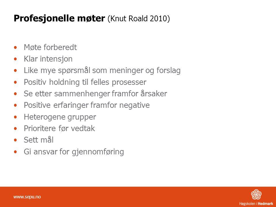 Profesjonelle møter (Knut Roald 2010)