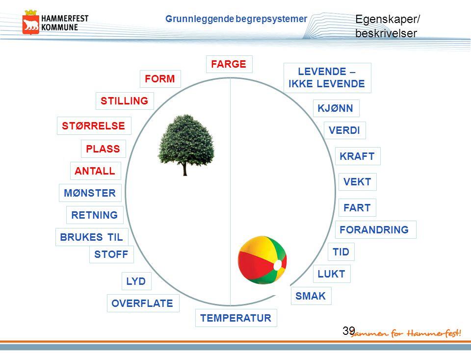Grunnleggende begrepsystemer