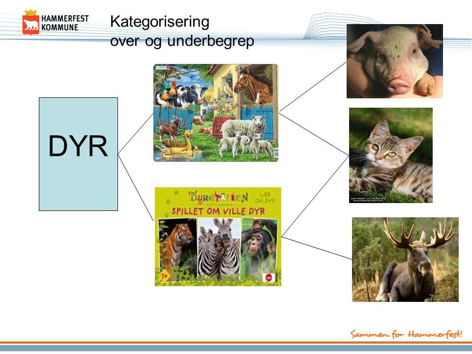 Kategorisering over og underbegrep DYR