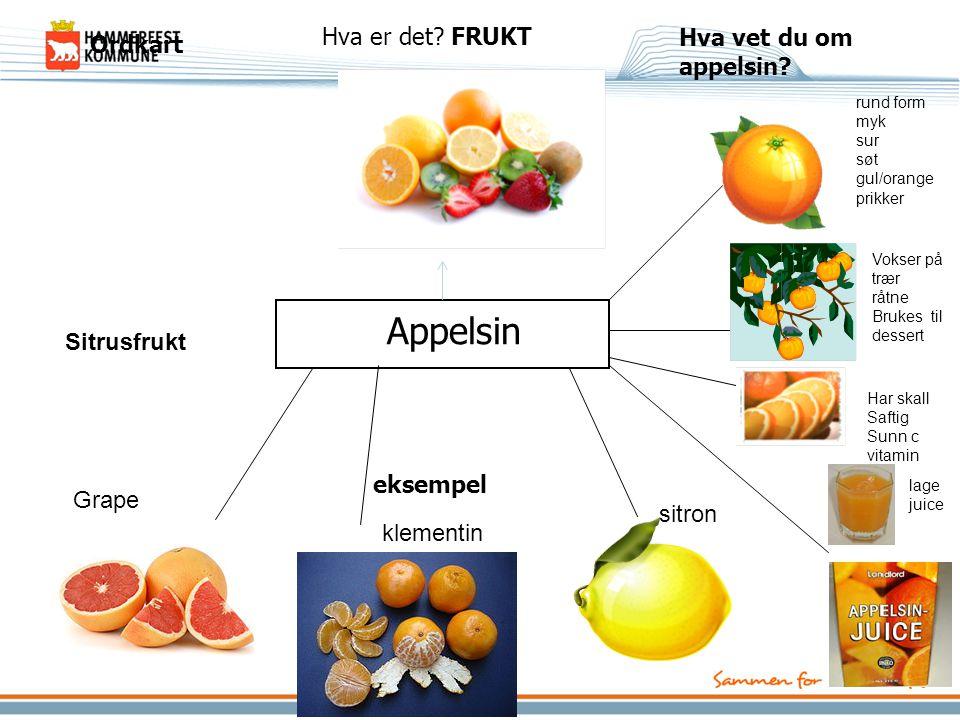 Appelsin Hva er det FRUKT Hva vet du om appelsin Ordkart Sitrusfrukt