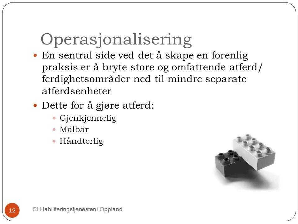 Operasjonalisering
