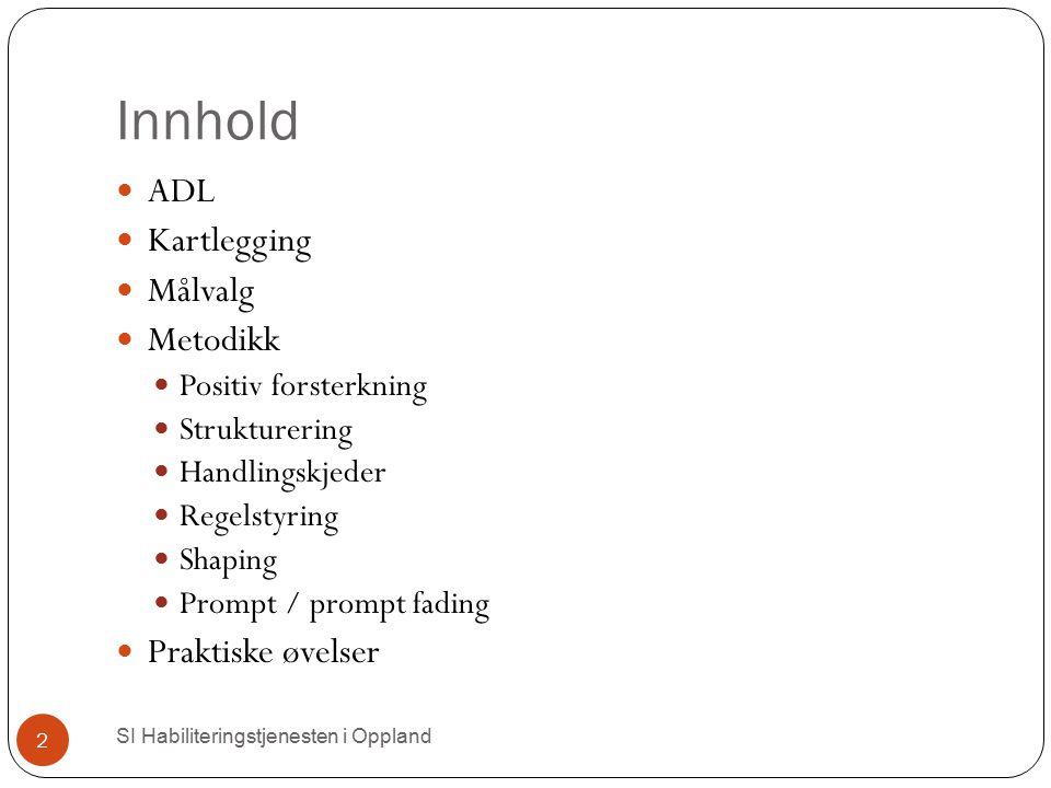 Innhold ADL Kartlegging Målvalg Metodikk Praktiske øvelser