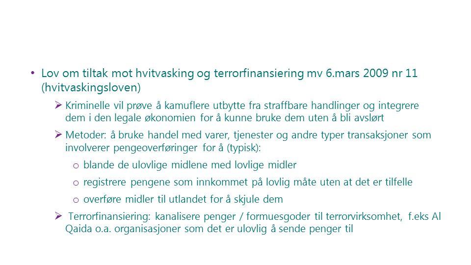 Lov om tiltak mot hvitvasking og terrorfinansiering mv 6