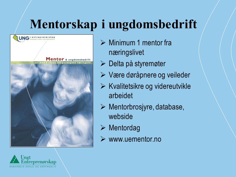 Mentorskap i ungdomsbedrift