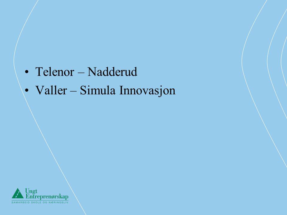 Telenor – Nadderud Valler – Simula Innovasjon