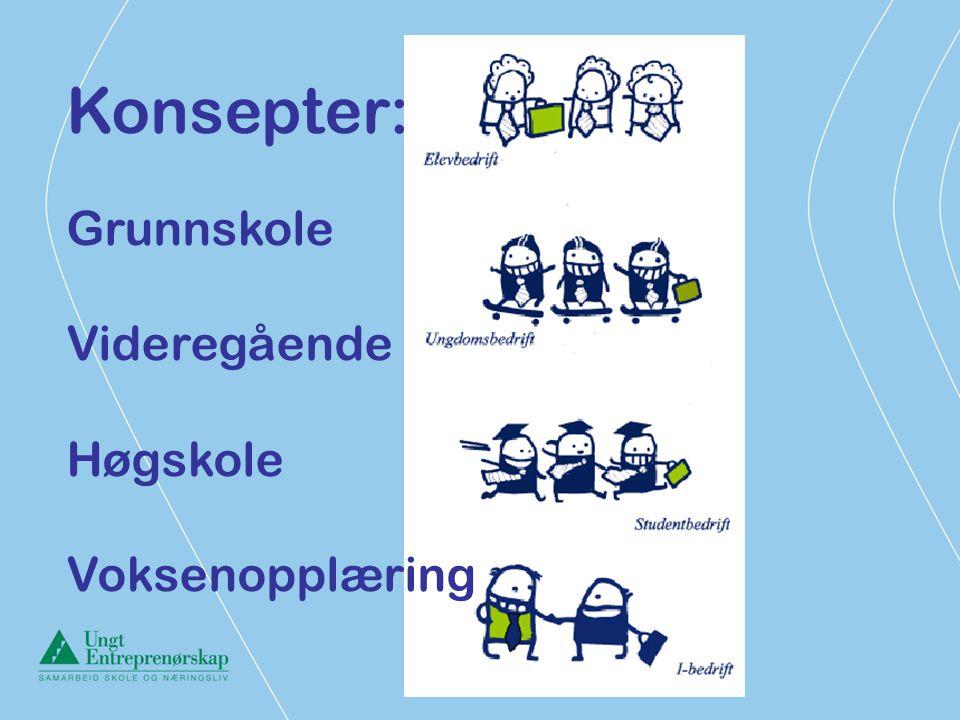 Konsepter: Grunnskole Videregående Høgskole Voksenopplæring