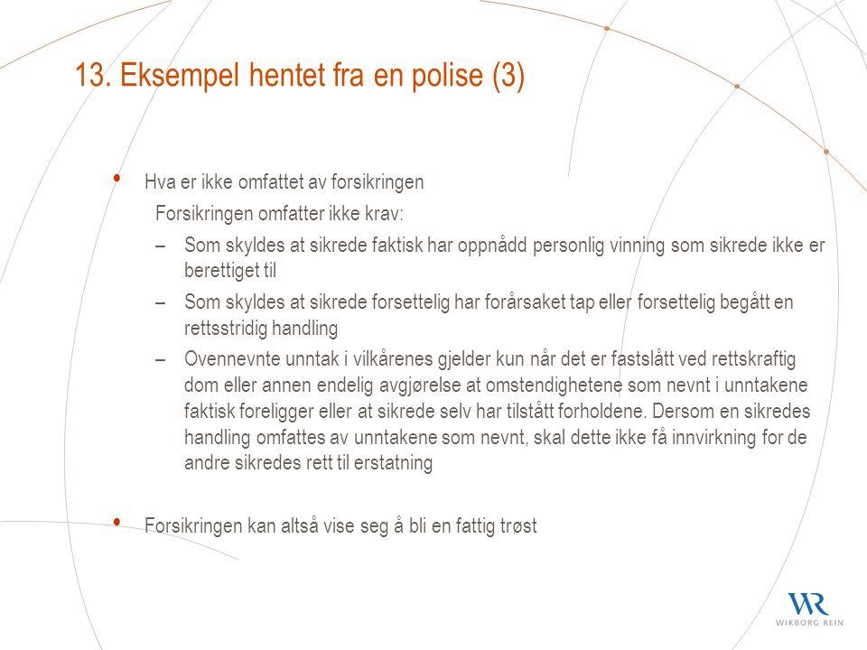 13. Eksempel hentet fra en polise (3)