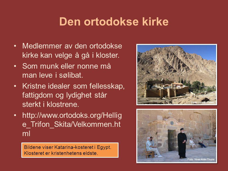 Den ortodokse kirke Medlemmer av den ortodokse kirke kan velge å gå i kloster. Som munk eller nonne må man leve i sølibat.