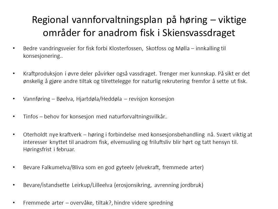 Regional vannforvaltningsplan på høring – viktige områder for anadrom fisk i Skiensvassdraget