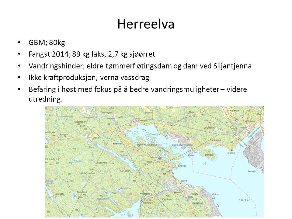 Herreelva GBM; 80kg Fangst 2014; 89 kg laks, 2,7 kg sjøørret