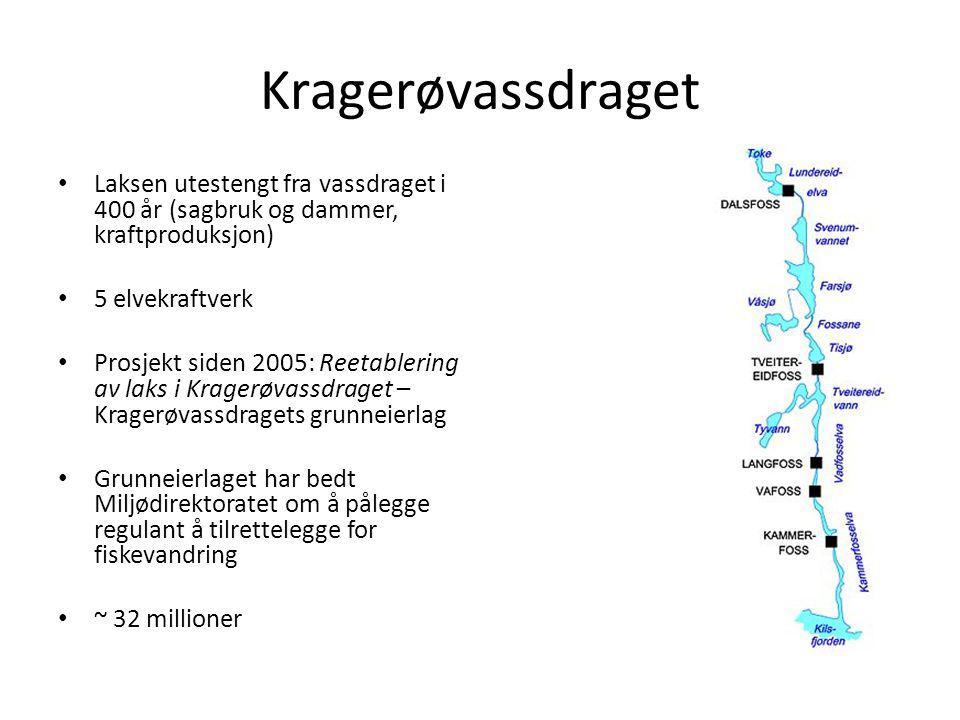 Kragerøvassdraget Laksen utestengt fra vassdraget i 400 år (sagbruk og dammer, kraftproduksjon) 5 elvekraftverk.